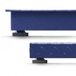 Detalle plataforma y pie báscula Accurex Rx-tiger